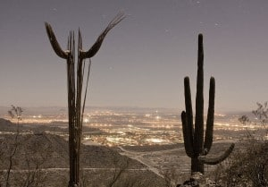 Arizona Family Law Lawyers Provide Expert and Affordable Services